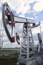Oil_24710533